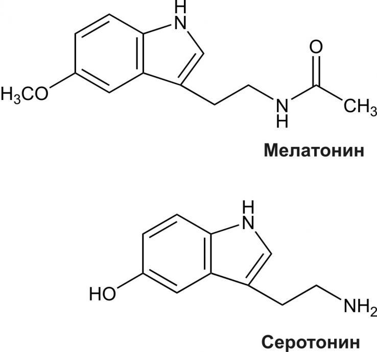 5Гидрокситриптамин фото